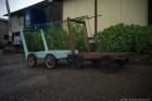 島の運搬車