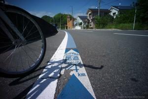 青いライン通りに進んだら迷いません